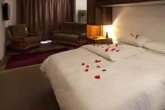 bnb ferndale bedroom